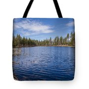 Reflection Lake Tote Bag