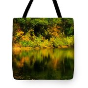 Reflection Of Autumn Colors Tote Bag