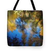 Reflection Perfection Tote Bag