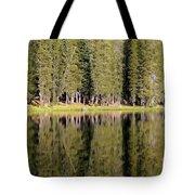 Reflections Along Summit Lake Tote Bag