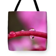 Reflections In Raindrops, Forbidden Tote Bag by Robert Postma
