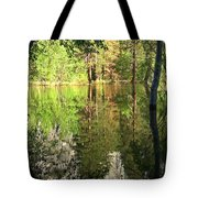 Reflections In The Merced Tote Bag