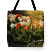 Window Reflections Tote Bag