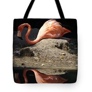 Reflections Of A Flamingo Tote Bag