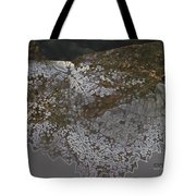 Reflections Of A Lacy Leaf Tote Bag