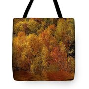 Reflections Of Autumn Tote Bag