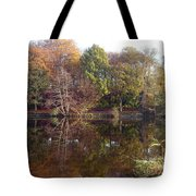 Reflections Of Autumn Tote Bag by Rod Johnson