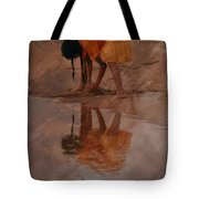 Reflections Of India Tote Bag