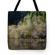 Reflections On Marshall Pond Tote Bag