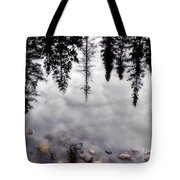 Reflective Wetlands Tote Bag