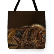 Reflexion D'un Hornet  Tote Bag