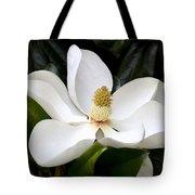 Regal Southern Magnolia Blossom Tote Bag