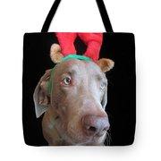 Reindeer Doggie Tote Bag