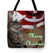 Reindeer Dreams Tote Bag