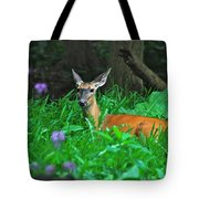 Relaxing In The Morning Tote Bag