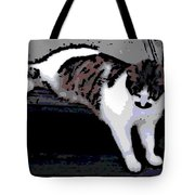 Relaxing On The Steps Tote Bag