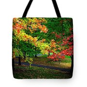 Reno Park - Autumn Tote Bag