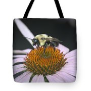 Resting Bee Squared Tote Bag