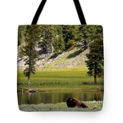 Resting Buffalo By Pond Tote Bag