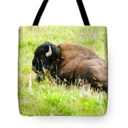 Resting Buffalo Tote Bag
