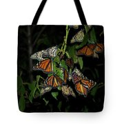 Resting Monarchs Tote Bag