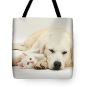 Retriever With Friendly Kittens Tote Bag