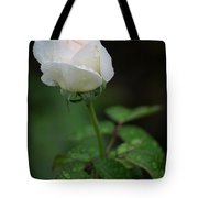 Reverence And Humility Tote Bag