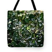 Rhinestone Diamonds Tote Bag