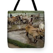 Rice Cultivation Tote Bag