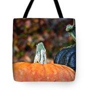 Rich Autumn Colors Tote Bag