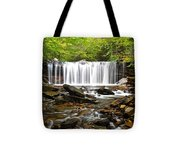 Ricketts Glen Waterfall Oneida Tote Bag