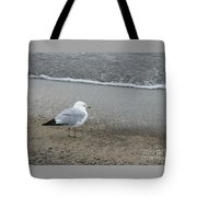 Ring-billed Gull Tote Bag