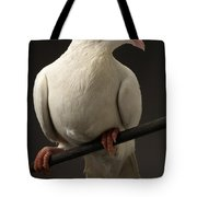 Ring-necked Dove Tote Bag
