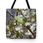 Ring-necked Parakeet Tote Bag