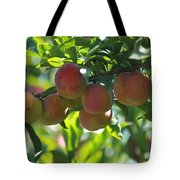 Ripe Fleshy Plums On The Branch Tote Bag