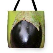 Ripened Eggplant Tote Bag