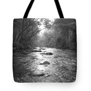 River Gaze Tote Bag
