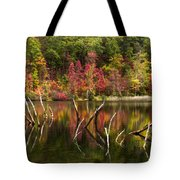 River Ghosts Tote Bag
