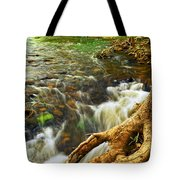 River Rapids Tote Bag by Elena Elisseeva