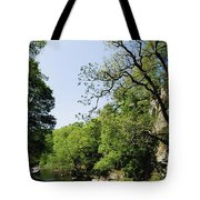 River Roe, Roe Valley, Limavady, Co Tote Bag