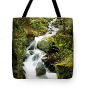 River With Trees In The Forest Tote Bag