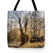Road Curve With Trees Tote Bag