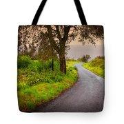 Road On Woods Tote Bag by Carlos Caetano