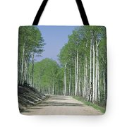 Road Through An Aspen Forest, Manti La Tote Bag