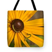 Roadside Daisy And Inch Worms Tote Bag