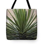 Roadside Discovery Tote Bag
