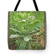 Roadside Vegitation Tote Bag