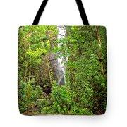 Roadside Waterfall Tote Bag