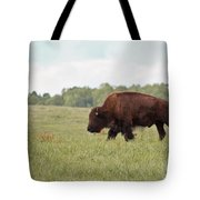 Roaming The Plains Tote Bag