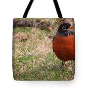 Robin Redbreast Tote Bag